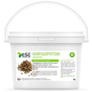 Harpagophytum – Arthrose et raideurs cheval – Plante pure