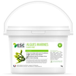 Algues Marines – Fatigue et baisse de forme cheval – Plante pure
