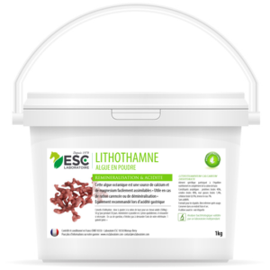 Lithothamne – Reminéralisation et acidité gastrique cheval – Plante pure