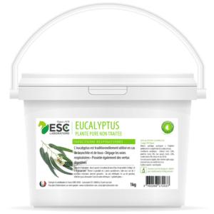 Eucalyptus – Respiration, bronchite et toux cheval – Plante pure