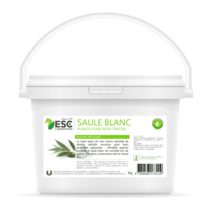Saule Blanc – Souplesse articulaire cheval – Plante pure